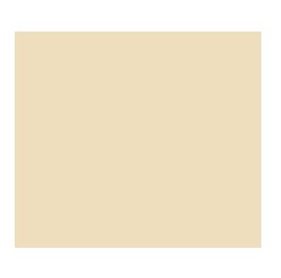 bolder-chips-logo